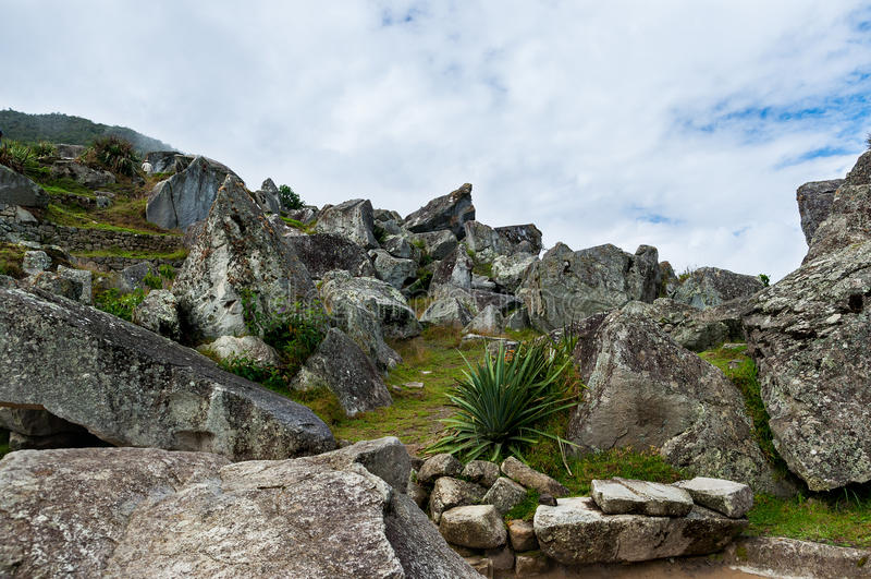 Ruins of Machu Picchu royalty free stock photos