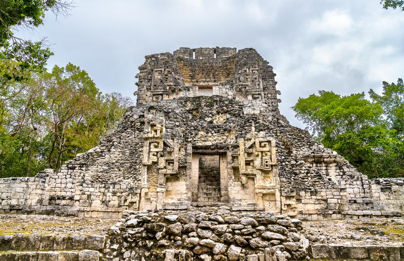 Ruins of a Mayan pyramid at Chicanna in Mexico. Ruins of a Mayan pyramid at the Chicanna Site in Campeche, Mexico royalty free stock photo