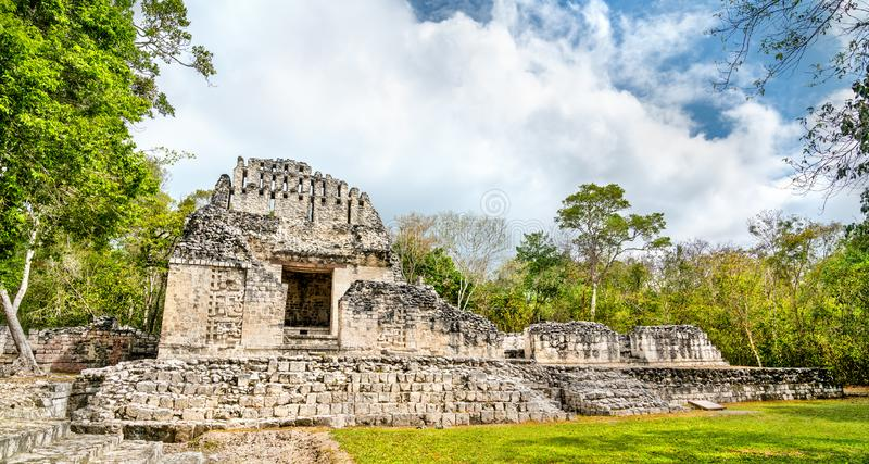 Ruins of a Mayan pyramid at Chicanna in Mexico. Ruins of a Mayan pyramid at the Chicanna Site in Campeche, Mexico stock photography
