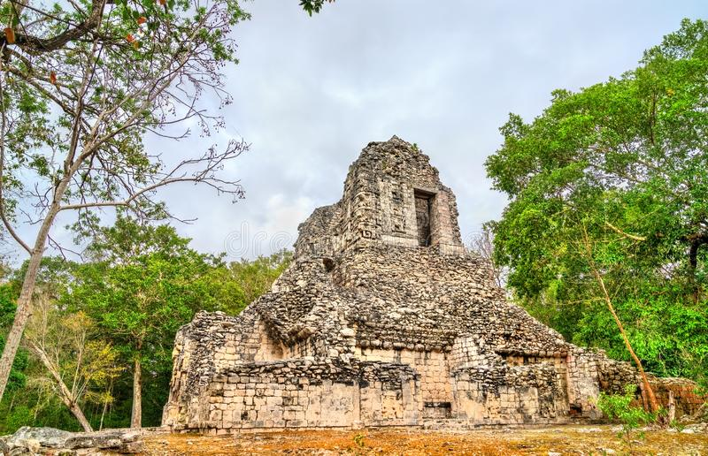 Ruins of a Mayan pyramid at Chicanna in Mexico. Ruins of a Mayan pyramid at the Chicanna Site in Campeche, Mexico royalty free stock image