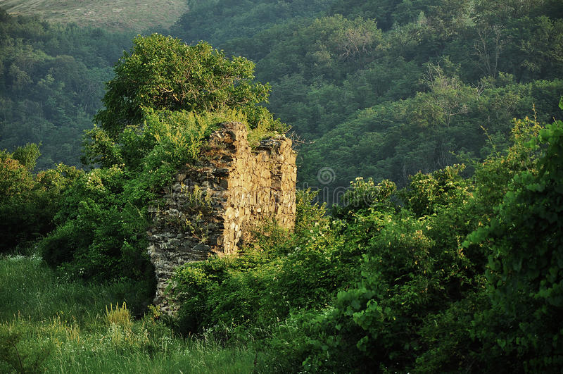 Ruins of medieval citadel stock photo