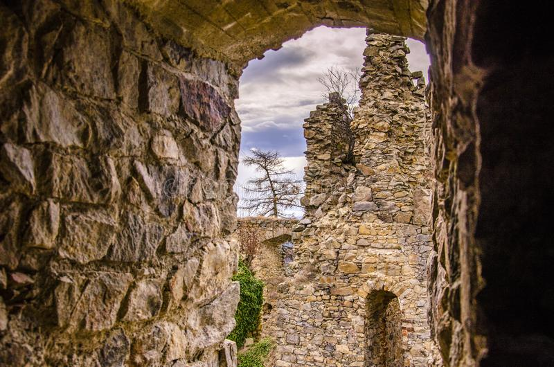 Ruins of an old castle in european nature. Old remains of a castle. Tree in the middle of fortress stock photo