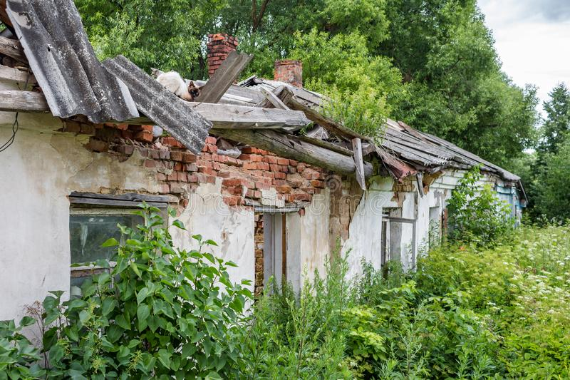 The ruins of an old rural house of brick, a cat on the roof royalty free stock photos