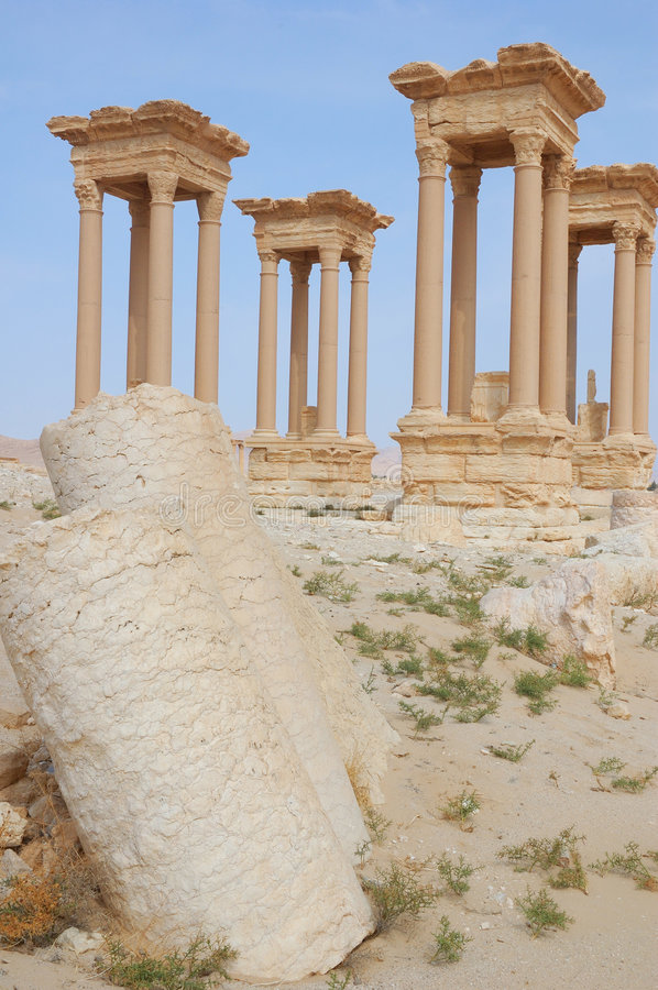 Ruins of Palmyra royalty free stock images