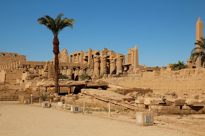 Ruins of pharaohs and palm trees in Luxor. Egypt royalty free stock photography