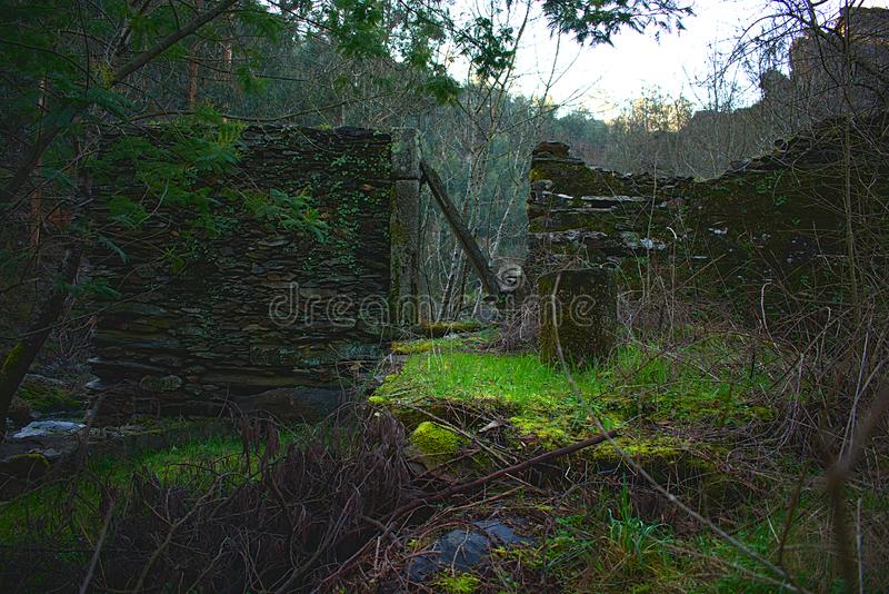 The Ruins in the river. Ruins of a house near a river. The nature has taken over from whatever were here before royalty free stock photo