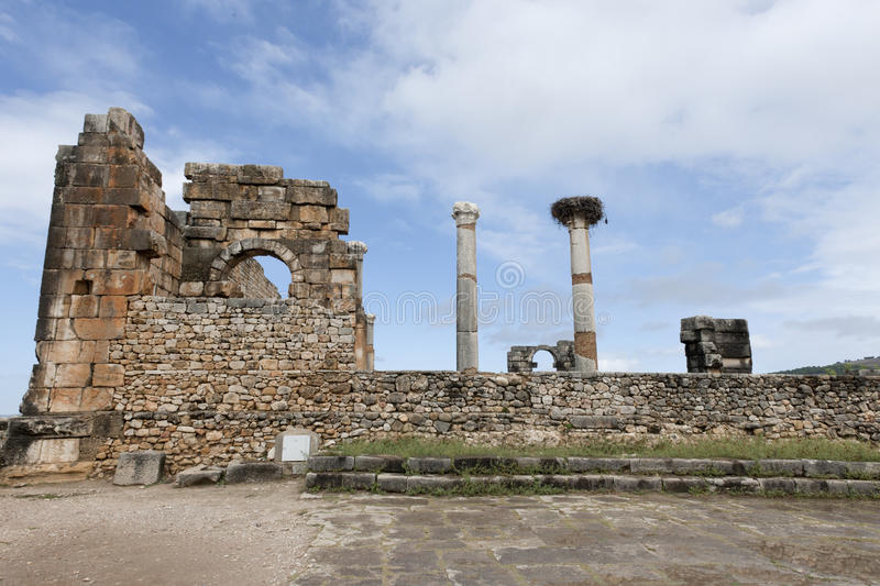 Download Ruins Of The Roman City Volubilis In Morocco Stock Image - Image: 25660983
