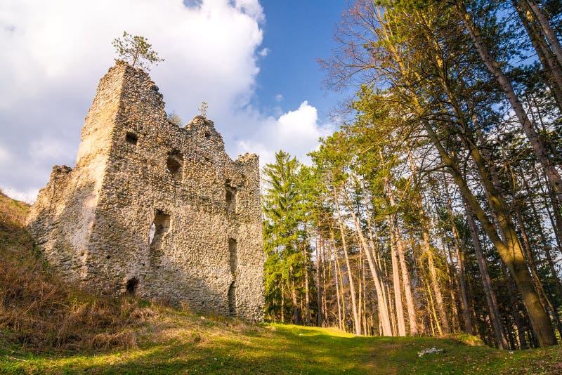 Ruins of Sklabina castle, Slovakia. Ruins of Sklabina castle, Slovakia, Europe stock image