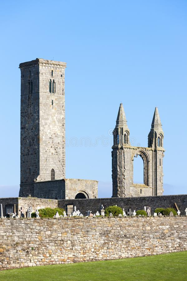 ruins of St. Rule& x27;s church and cathedral, St Andrews, Fife, Scot stock photos