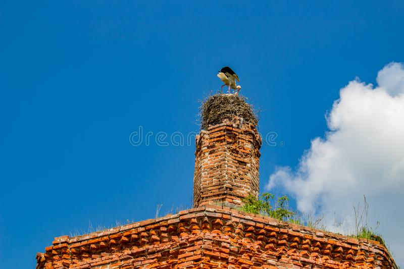 Ruins of the tent church of St. John the Evangelist of the 18th century, Russia stock images