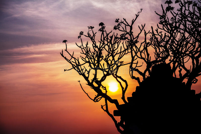 Ruins and tree silhouette in Hampi stock photos