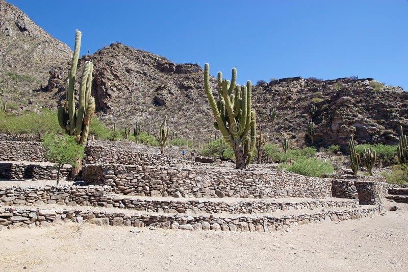 Ruins van Quilmes in de provincie Calchaqui Valleys, provincie Tucuman, Argentinië stock afbeelding