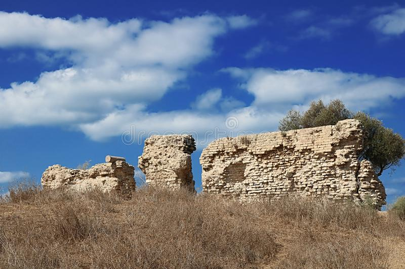 Ruins of wall in the park, Ashkelon, Israel. View of ruins of wall in the park, Ashkelon, Israel royalty free stock image