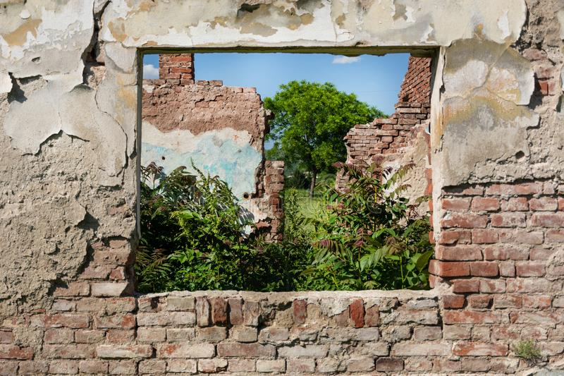 Ruins window and red brick wall of old the house without roof and grass growing from the floor royalty free stock photography