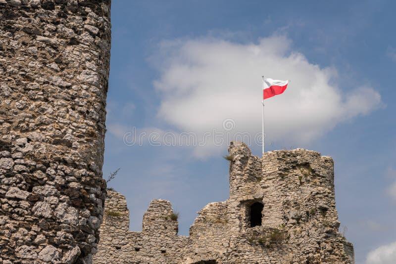 Ruiny średniowieczny wierza z flaga fotografia stock