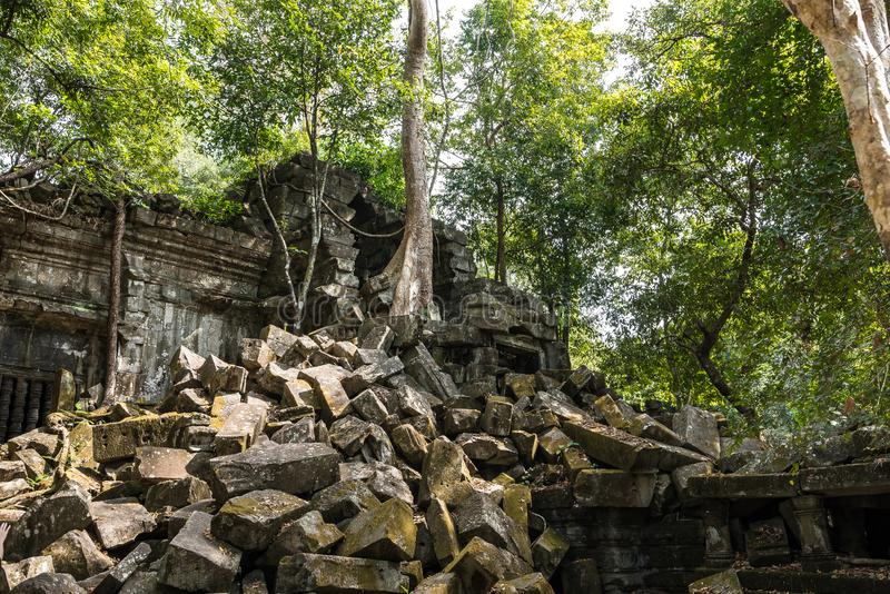 Ruiny antyczna Beng Mealea ?wi?tynia nad d?ungl?, Kambod?a zdjęcie royalty free