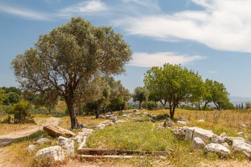 Ruiny antyczny miasteczko Teos zdjęcia royalty free