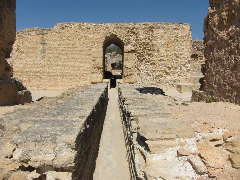 Ruiny antyczny miasto Carthage w Tunezja zdjęcia royalty free