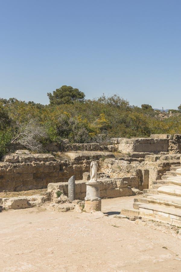 Ruiny miasto salami w Famie, Cypr zdjęcia stock