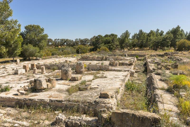 Ruiny miasto salami w Famie, Cypr zdjęcie royalty free