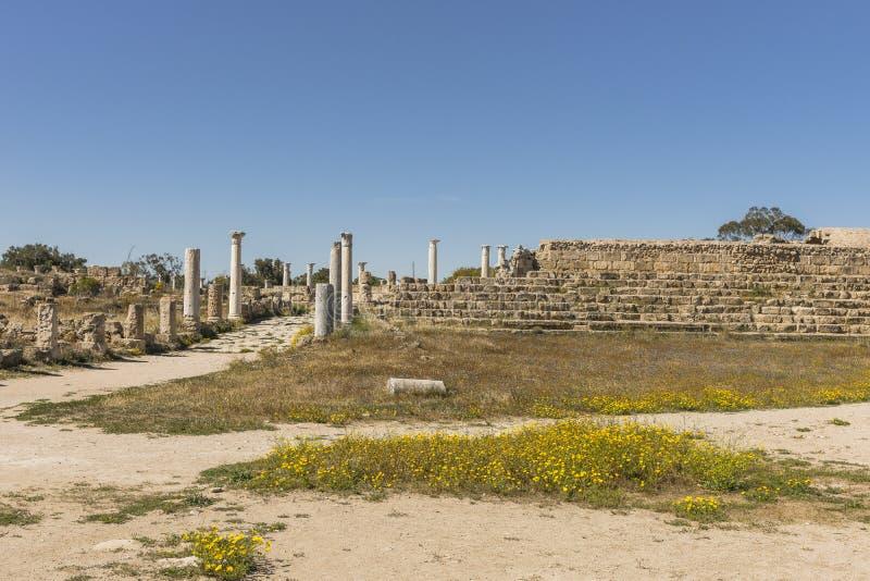 Ruiny miasto salami w Famie, Cypr obrazy royalty free