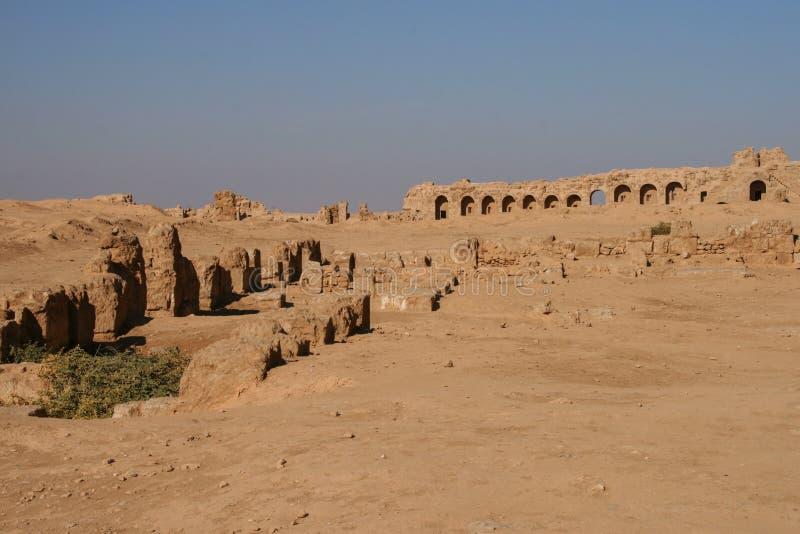Ruiny resafa obrazy stock