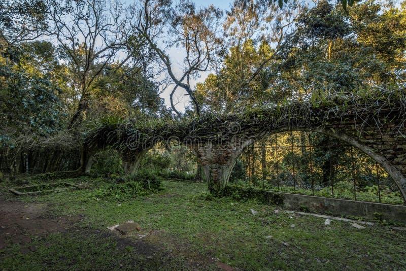 Ruiny stary dom przy Salta Ventoso parkiem - Farroupilha, rio grande robi Sul, Brazylia zdjęcie stock