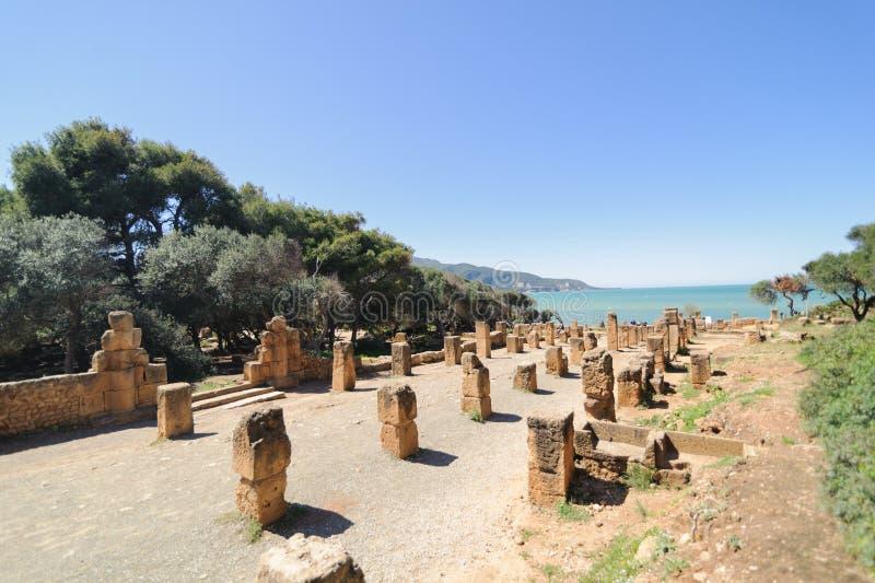 Ruiny Tipasa (Tipaza) Wygłupy miasto był colonia w Romańskich gubernialnych Mauretania Caesariensis loca zdjęcie stock