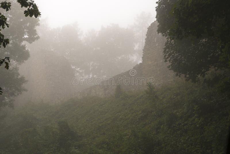 Ruiny w mgle obraz stock