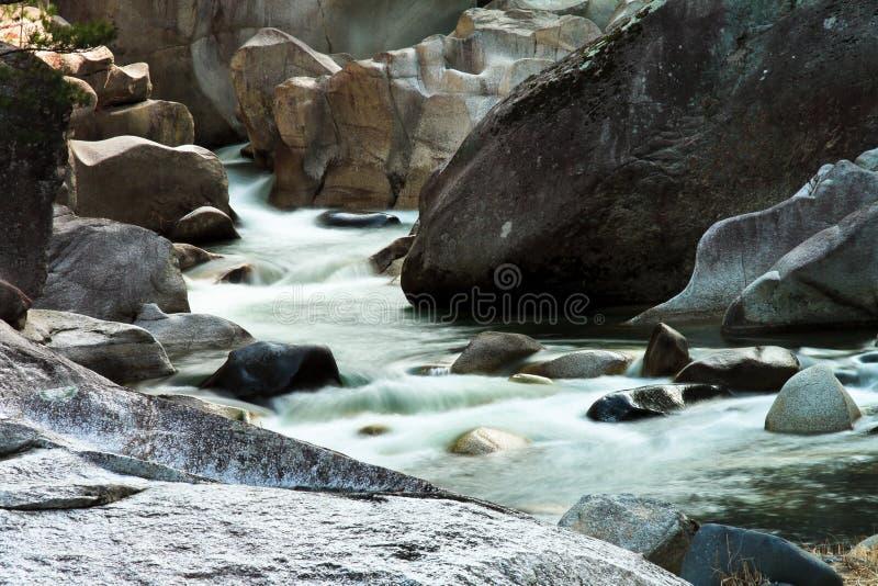 Ruisseau dans la forêt en pierre photographie stock libre de droits