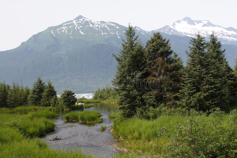 Ruisseau de montagne avec des montagnes à l'arrière-plan images libres de droits