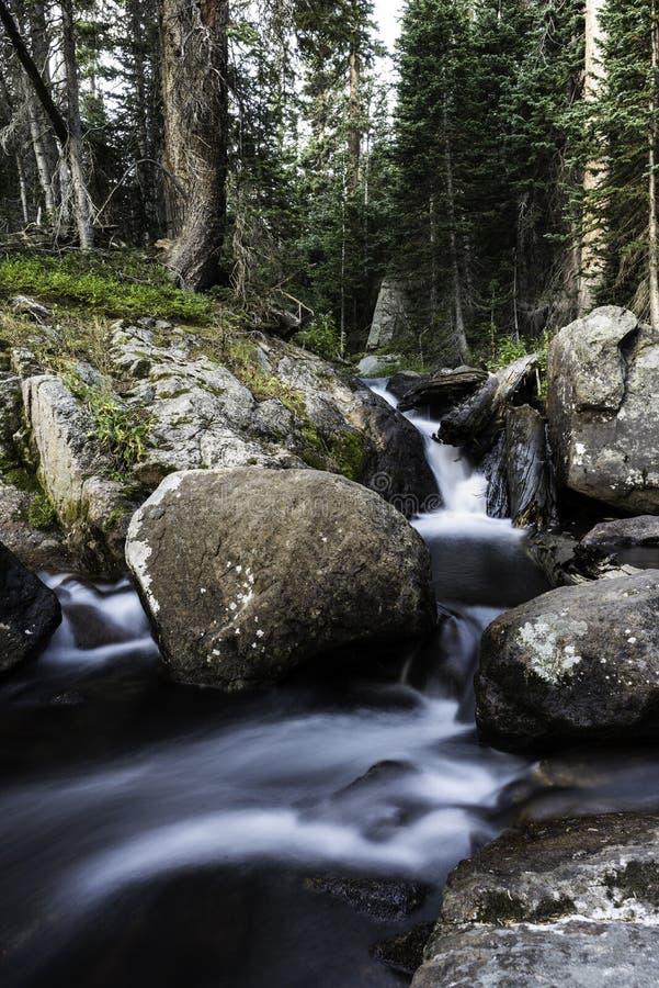 Ruisseau de petites cascades rocheuses photo libre de droits