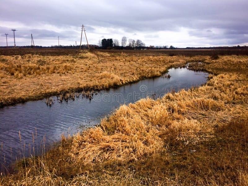 Ruisseau en rives de la Lettonie avec la haute herbe photos stock