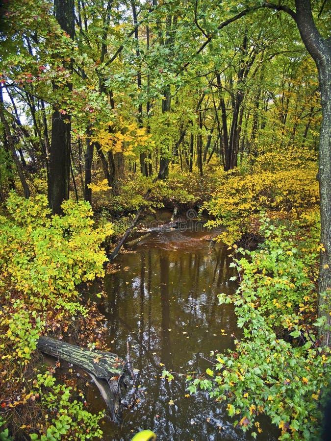 Ruisseau tôt d'automne image libre de droits