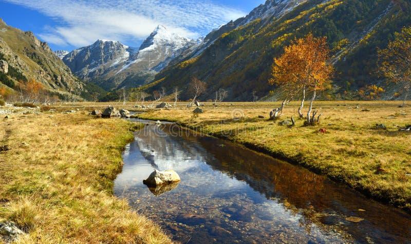 Download Ruisseau transparent image stock. Image du forêt, frais - 45368173