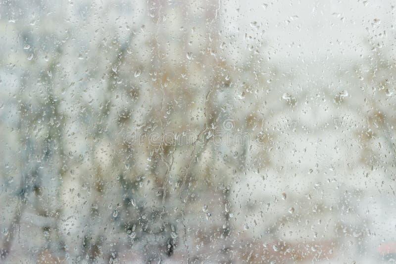 Ruit tijdens een regen royalty-vrije stock foto