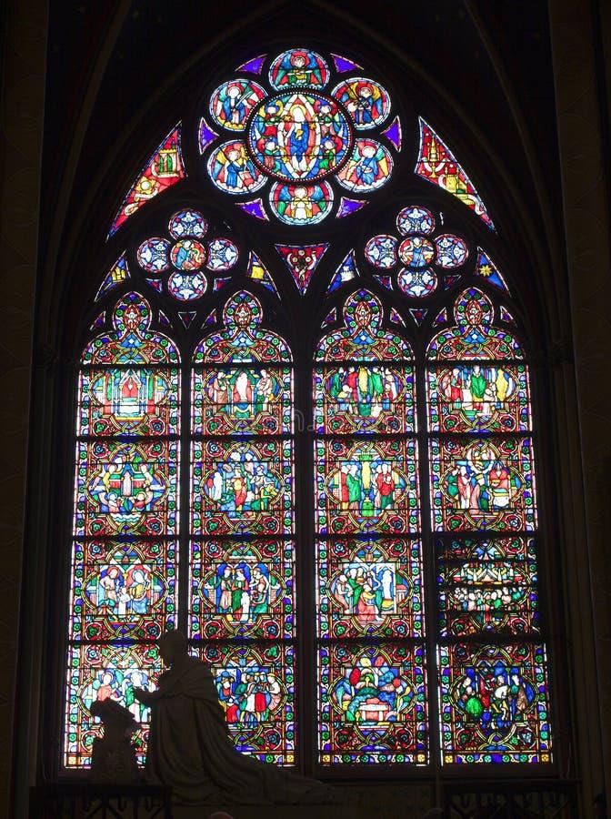 Ruit van Notre-Dame in Parijs royalty-vrije stock fotografie