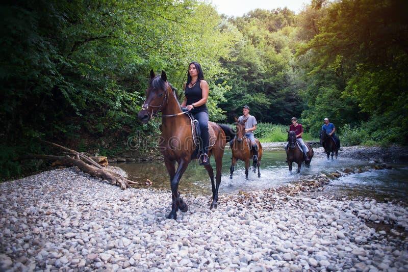 Ruiter op een paard royalty-vrije stock fotografie