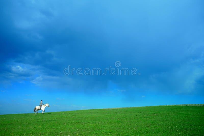 Ruiter op wit paard royalty-vrije stock afbeelding