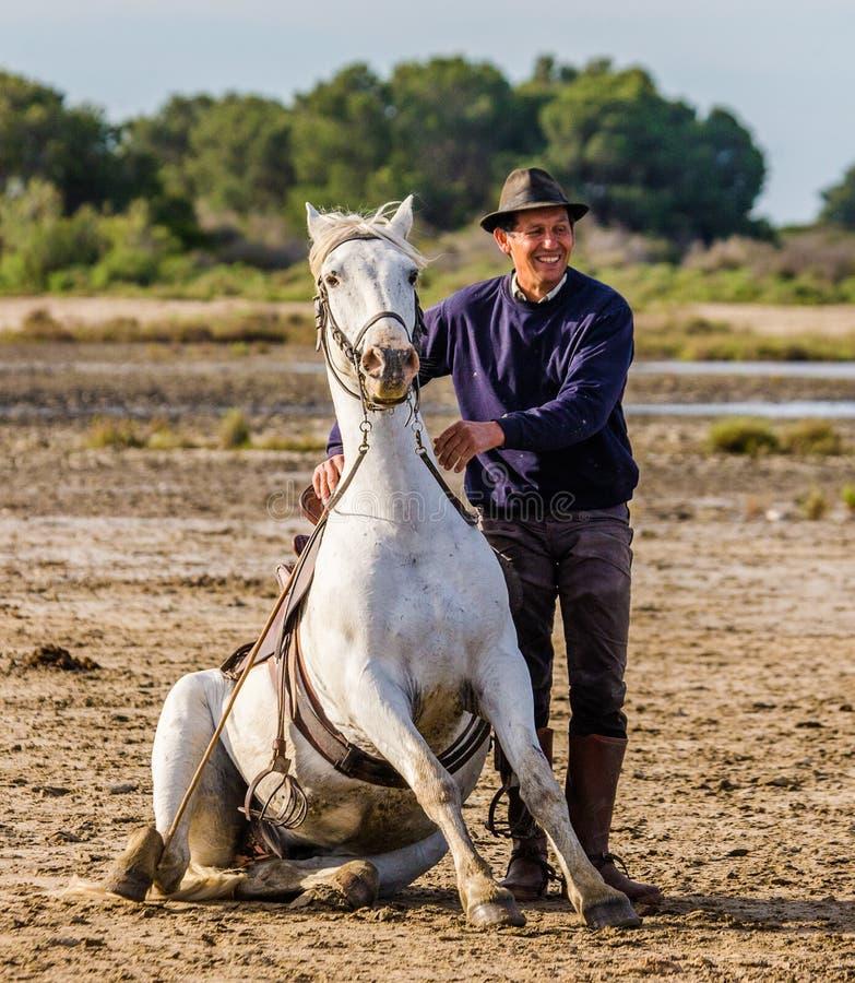 Ruiters dichtbij zijn Wit Camargue-paard stock foto