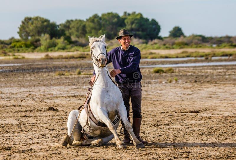 Ruiters dichtbij zijn Wit Camargue-paard stock fotografie