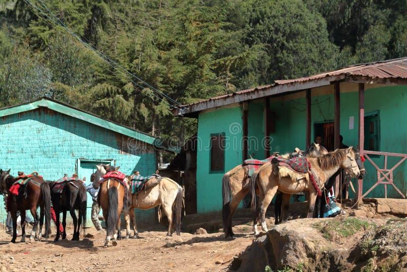 Ruiters op de landweggen van Ethiopië stock foto's