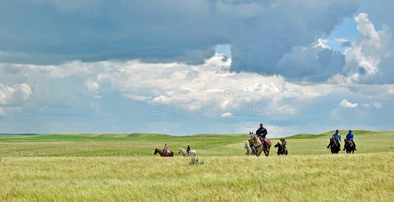 Ruiters op de zonnige prairie stock afbeeldingen