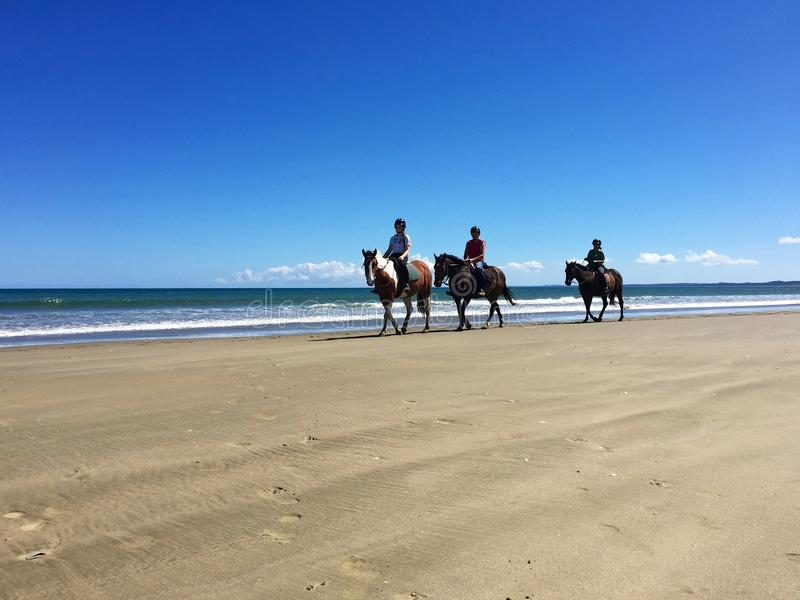 Ruiters op horseback op 90 Mijlstrand, Ahipara, Nieuw Zeeland stock fotografie