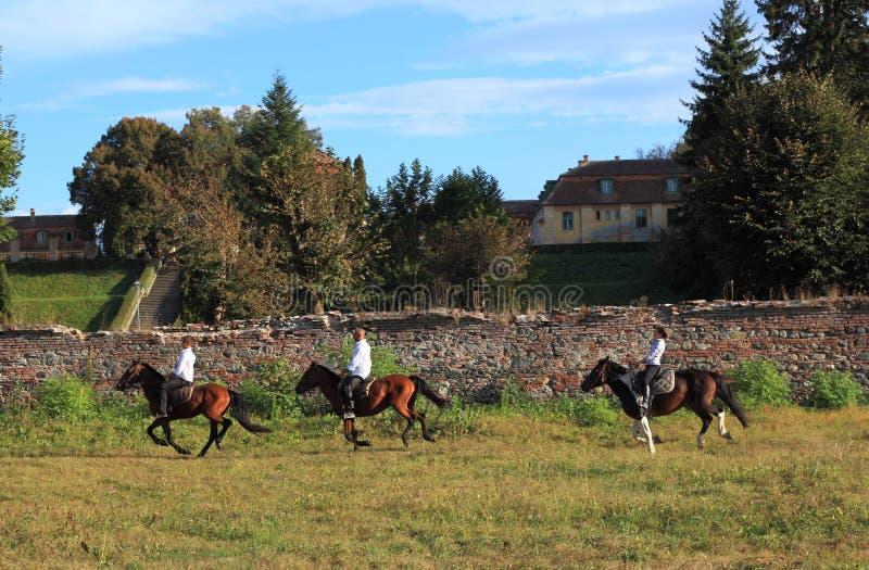Ruiters op paarden stock afbeelding