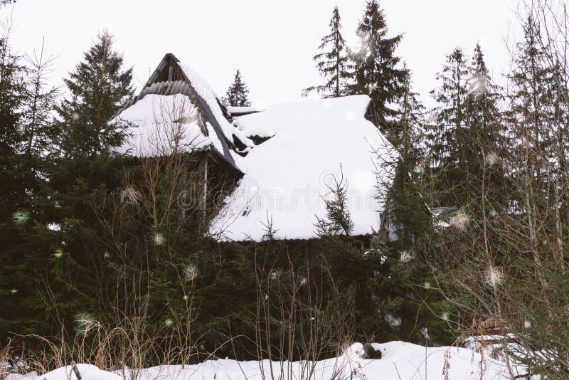 Rujnujący i porzucający stary drewniany dom w Karpackich górach obraz royalty free