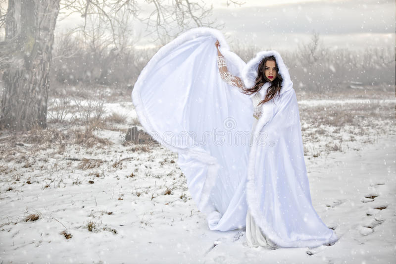 Ruler of the Snow. Beauty in the midst of a cold, stark, baron setting, the Ruler of the Snow commands the snow to fall with a wave of her mystical cape stock photos