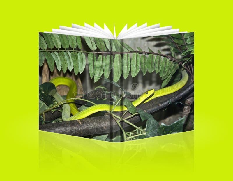 Rullad ihop bok av ormen royaltyfria foton