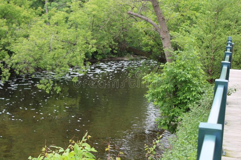 Rullande down floden royaltyfri bild