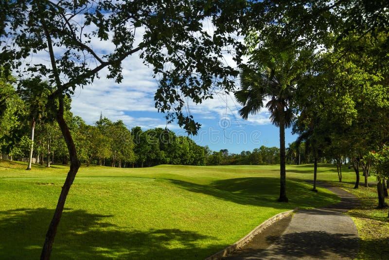 Rullande golfgräsplaner royaltyfria bilder